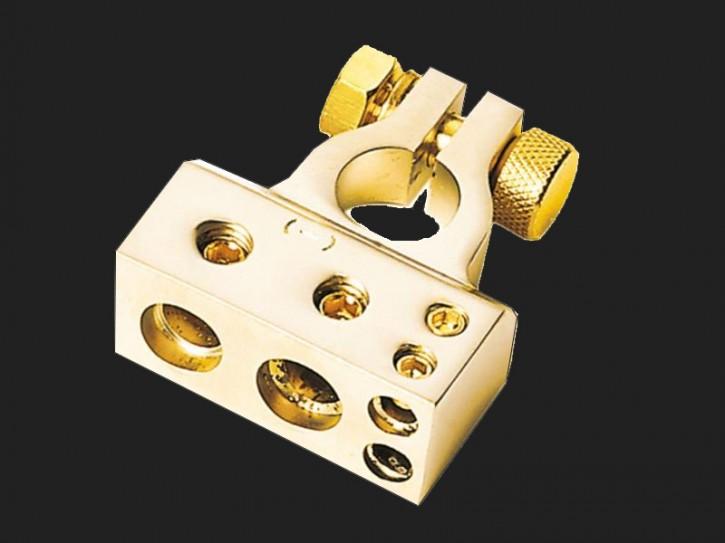 ACV Batterieklemme Minuspol 1 x 35 mm² / 1 x 20 mm² / 2 x 10 mm (gold)