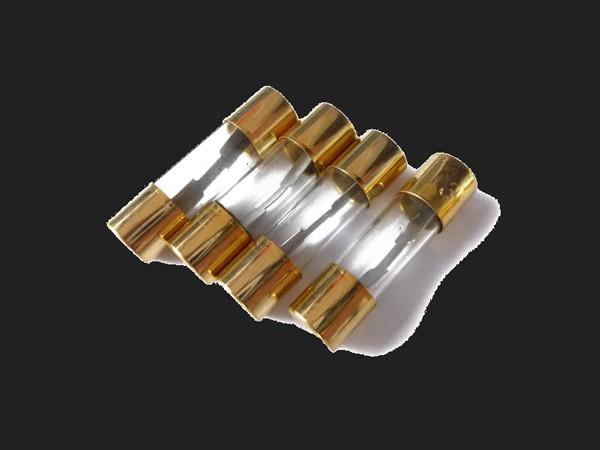 Dietz AGU Glassicherung 10A 4 Stück (vergoldet) (Abverkauf)