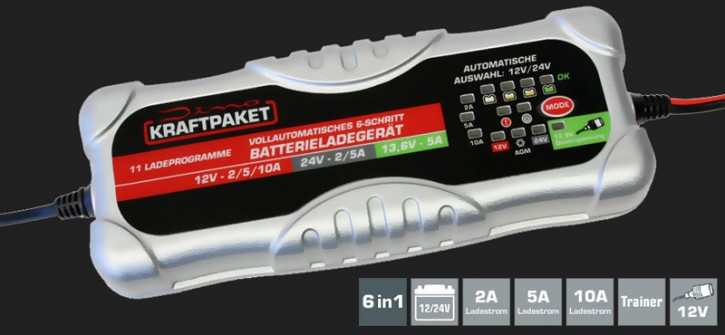 Dino Vollautomatisches 6-Schritt Batterieladegerät mit 2A/5A/10A Ladestrom für 12V/24V Batterien