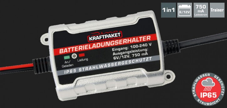 Dino Vollautomatisches Batterie-Erhaltungsladegerät mit 750mAh Ladestrom für 6V/12V Batterien