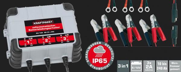 Dino Vollautomatisches Batterie-Erhaltungsladegerät mit 3x2A (6A) Ladestrom für 6V/12V Batterien